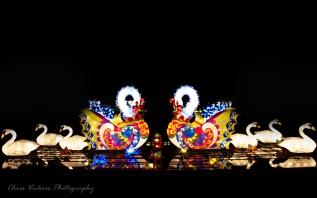 Asia Lanterns NBG-10