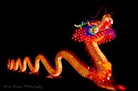 Asia Lanterns NBG-14