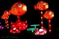 Asia Lanterns NBG-17