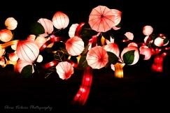 Asia Lanterns NBG-20