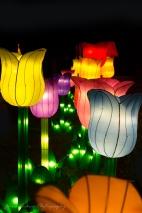 Asia Lanterns NBG-25