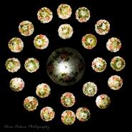 Lanterns Asia